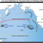 Des millions de passagers clandestins tournent autour de l'Océan Pacifique