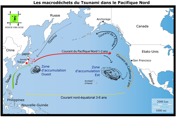 FR_macrodechets-tsunami_Robindesbois