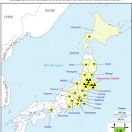 The waste from the Japanese earthquake and tsunami