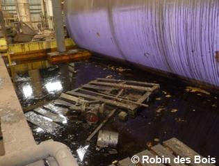 image062_citron_robin-des-bois