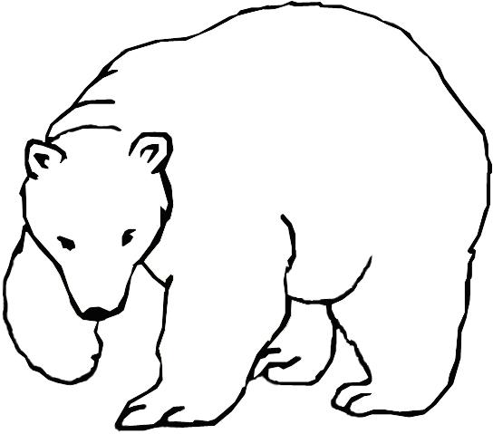 42_ours_sites-pollues-arctiques_robin-des-bois