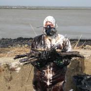 Marée noire dans l'estuaire de la Loire , reportage photos – 2008