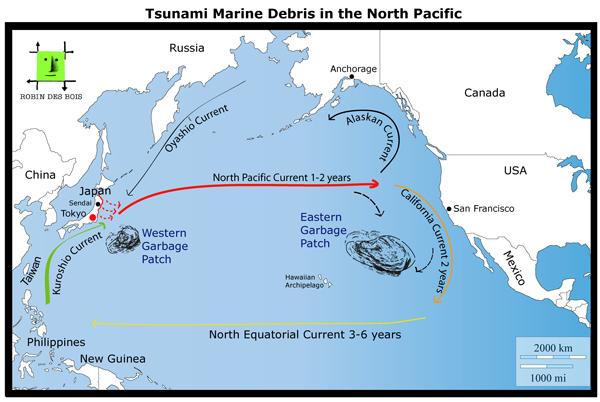 EN_macrodechets tsunami_Robindesbois