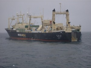 Nisshin-maru1-RobinDesBois-2010