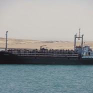 Ezadeen, the livestock and migrant carrier