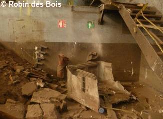 image056_citron_robin-des-bois