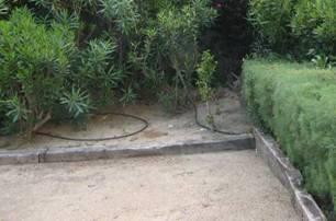 jardin2_traverses_robin-des-bois