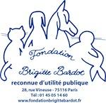 Logo BB script vecto bleu avec adresse