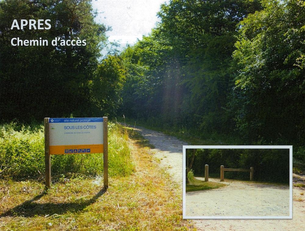 39-decharge-pont-de-poitte-chemin-acces-apresRobindesBois