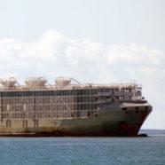 (Français) 42 marins et 5867 vaches périssent en mer