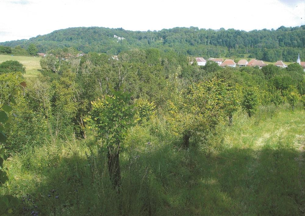 longeville-photo2
