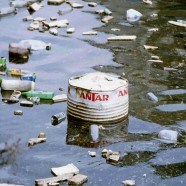 Coordinated plan to reduce litter – 2009