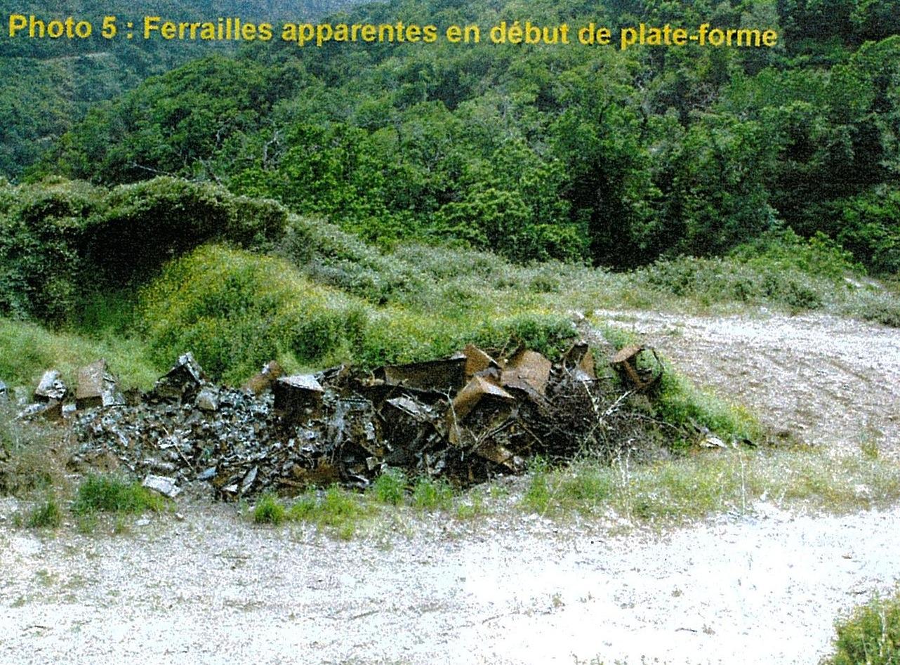 sari-dorcino-photo5-RobindesBois