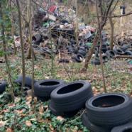 (Français) Remèdes anti-ordures